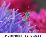 Background  Color Landscape Of...