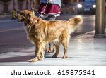 the streets of the night  the... | Shutterstock . vector #619875341