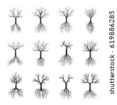 set black trees with roots.... | Shutterstock .eps vector #619886285