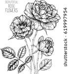 rose flowers drawing... | Shutterstock .eps vector #619997954
