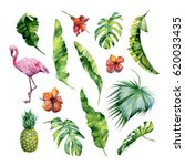 watercolor illustration set of... | Shutterstock . vector #620033435