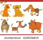 cartoon illustration of dogs... | Shutterstock . vector #620036819