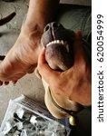 Small photo of Rabid Dog bite.