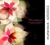 beautiful flower background... | Shutterstock .eps vector #62010211