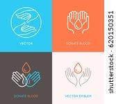 vector set of logo design... | Shutterstock .eps vector #620150351