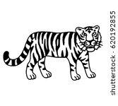 cute tiger cartoon roaring | Shutterstock .eps vector #620192855