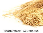 close up of cereal grain whole... | Shutterstock . vector #620286755
