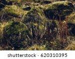 iceland | Shutterstock . vector #620310395