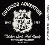 outdoor adventure  mountain... | Shutterstock .eps vector #620349089