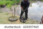 fisherman | Shutterstock . vector #620357465