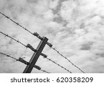 Small photo of High level barbed wire fence seen against a calm sky, with the aim of preventing admittance to this sensitive area.