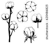 hand drawn flowers. cotton... | Shutterstock .eps vector #620486825