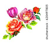 Stock photo bouquet of rose and tulips watercolor can be used as greeting card invitation card for wedding 620497805