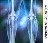 leg joint anatomy 3d...   Shutterstock .eps vector #620500499