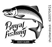 sockey salmon fish. black and... | Shutterstock . vector #620570921