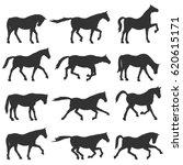 Horse Silhouette Vector Set....