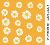 summer meadow flowers.... | Shutterstock .eps vector #620628275