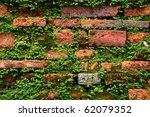 Fern On Old Brick Wall  ...