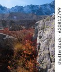 Small photo of Autumn at the col d'arsine la grave en isere in france