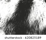 distressed overlay texture of... | Shutterstock .eps vector #620825189