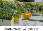 a colourful courtyard garden... | Shutterstock . vector #620901419
