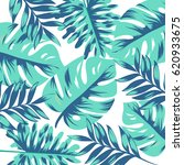 Tropical Leave Background