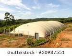 image of a biodigester  which... | Shutterstock . vector #620937551