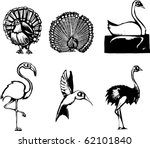 Woodcut style group of different birds - stock vector