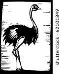 African ostrich in woodcut style - stock vector