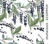 berries of black currant....   Shutterstock . vector #621049424
