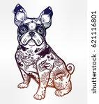 vintage style beautiful bulldog ... | Shutterstock .eps vector #621116801