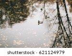 Wild Ducks On The Lake ...