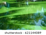 the water is green because of... | Shutterstock . vector #621144089