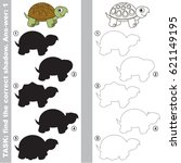 turtle with different shadows... | Shutterstock .eps vector #621149195
