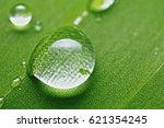water dot | Shutterstock . vector #621354245