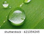 water dot | Shutterstock . vector #621354245