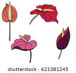 hand drawn flamingo flower...   Shutterstock .eps vector #621381245