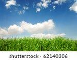 spring grass | Shutterstock . vector #62140306