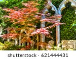 old garden colorful painting | Shutterstock . vector #621444431