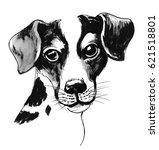Stock photo cute puppy sketch 621518801