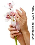 hands and orchid over isolated... | Shutterstock . vector #62157082