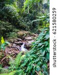 water flowing in champa thong... | Shutterstock . vector #621580259