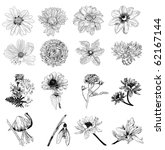 collection of 16 flower sketches | Shutterstock .eps vector #62167144