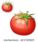 whole tomato vegetable. cartoon ... | Shutterstock .eps vector #621769829
