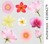 flowers collection in... | Shutterstock .eps vector #621806279