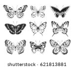 Stock vector collection of hand drawn black silhouette butterflies vector illustration in vintage style 621813881