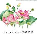 pink lotus border. watercolor... | Shutterstock . vector #621829391