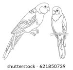 line hand draw parrots. | Shutterstock .eps vector #621850739