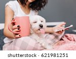 Stock photo portrait funny sweet moments of domestic pets chilling with young woman in pajama on bed little 621981251