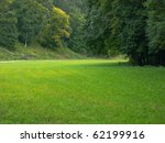 Beautiful Green Clearing Field...